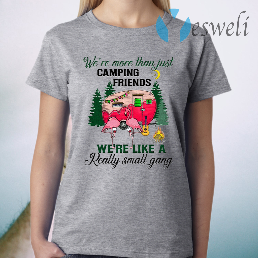 We Are More Than Just Camping Friends We're Like A Really Small Gang T-Shirt