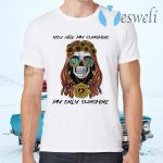 You Are My Sunshine My Only Sunshine T-Shirts