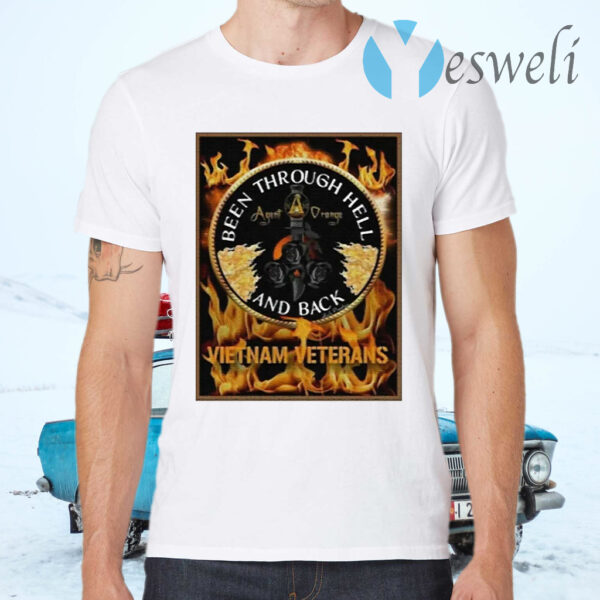 Been Through Hell And Back Vietnam Veterans T-Shirts