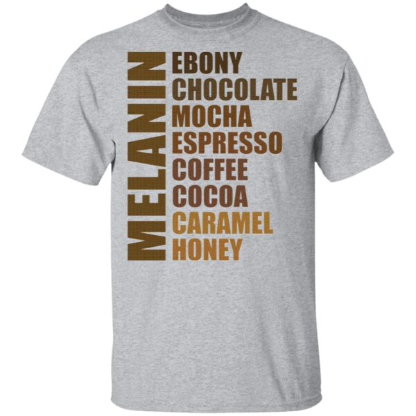 Melanin Black Queen African American Women Many Shades of Brown T-Shirt